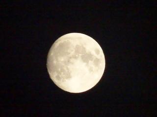 2014-11-05 19.52.24.jpg