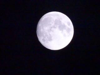 2014-11-05 19.55.02.jpg