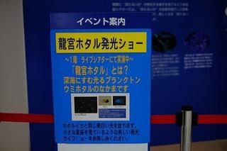 DSCF2078.jpg