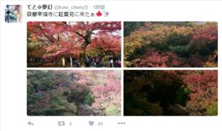 京都 紅葉   Twitter検索.png