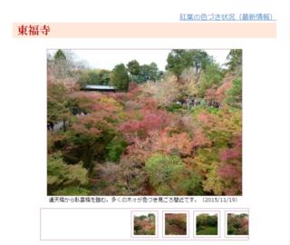 京都・滋賀の紅葉情報 2015:京都新聞.png