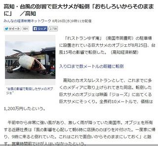 高知・台風の影響で巨大サメが転倒「おもしろいからそのままに」高知 Yahoo ニュースs.jpg