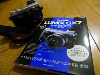 LRG_DSC00664.jpg