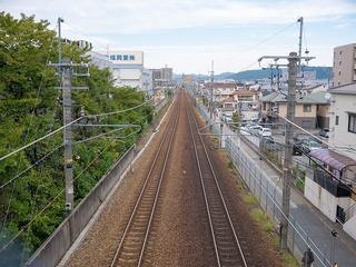 P1020136-1.jpg