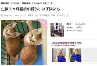 iwakuni01.jpg