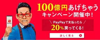 paypaycam.jpg