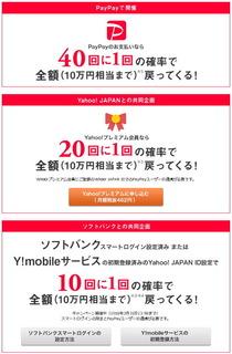 paypaycam02.jpg