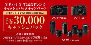 x-camp01.jpg